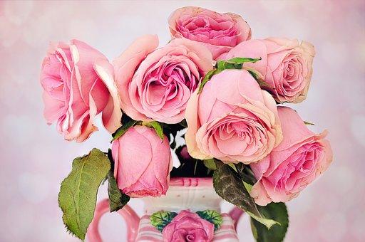 solution nutritive pour les fleurs coupées